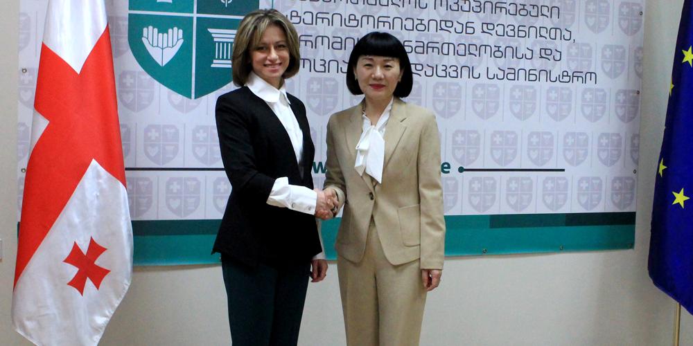 ჯანდაცვის მინისტრი ჩინეთის ელჩს შეხვდა