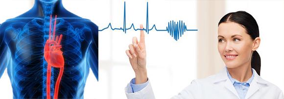 რას წარმოადგენს გულ–სისხლძარღვთა დაავადებები?