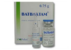 ბათბაქტამი / Batbaktam