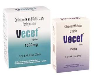 ვეცეფი / Vecef