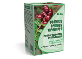 წითელი მოცვის ფოთოლი / Folia Vaccini vitis-idaea