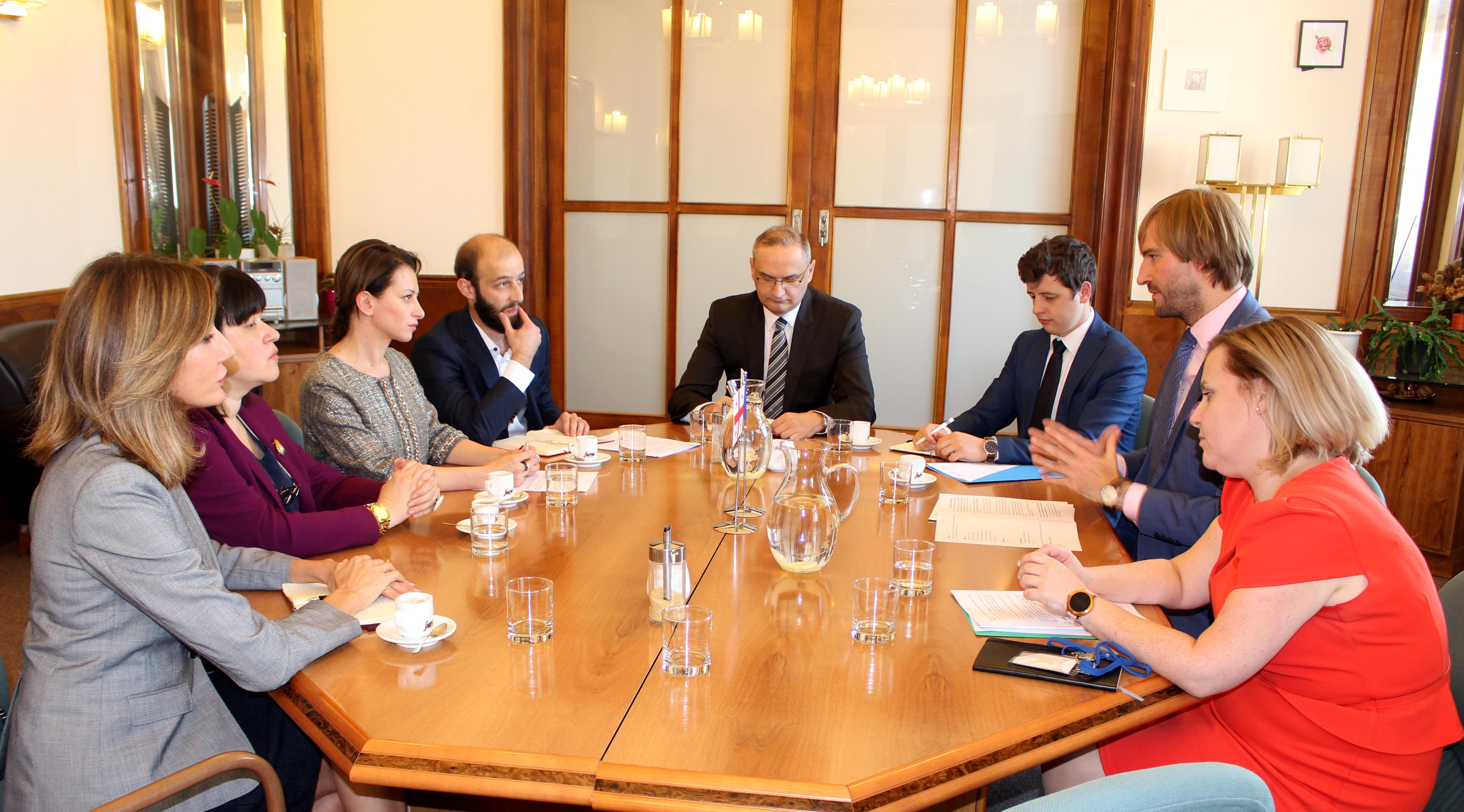 შეხვედრა ჩეხეთის რესპუბლიკის ჯანდაცვის მინისტრთან